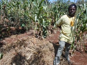 リサイクル事業 実践農家