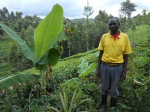 リサイクル事業 実践農家3