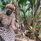 リサイクル事業 実践農家4