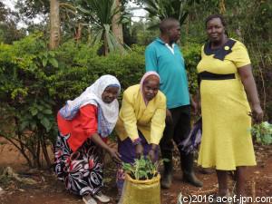 研修では市街地の人向けに、袋を使った簡単な野菜栽培方法も紹介。生ゴミを堆肥化してこうした家庭菜園に使えば、省スペースでおいしい野菜も食べられ、一石二鳥なのです。